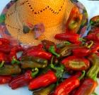 Peperoni rossi e verdi delicati