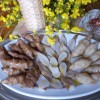 L'umile Topinambur buono in cucina