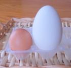 L'uovo una delle risorse in cucina