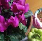 Gazpacho buonissimo in agosto