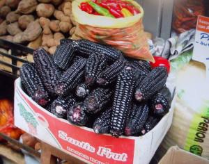 Che belle pannocchie nere
